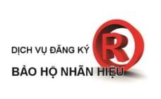 Dịch vụ đăng ký bảo hộ nhãn hiệu