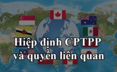 Hiệp định CPTPP và quyền liên quan